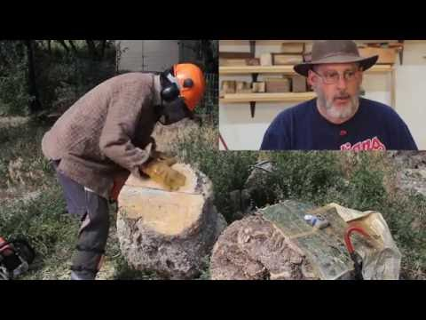 The First Cut is....Important when Milling a Burl: wyomingwoodturner
